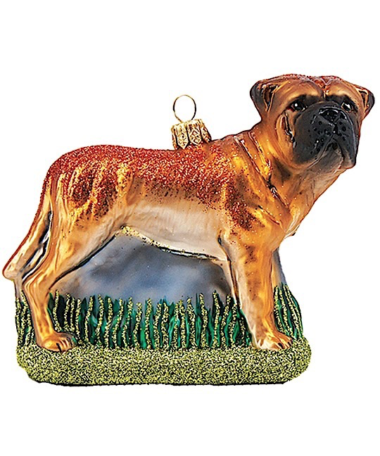 Boxer Hund Braun