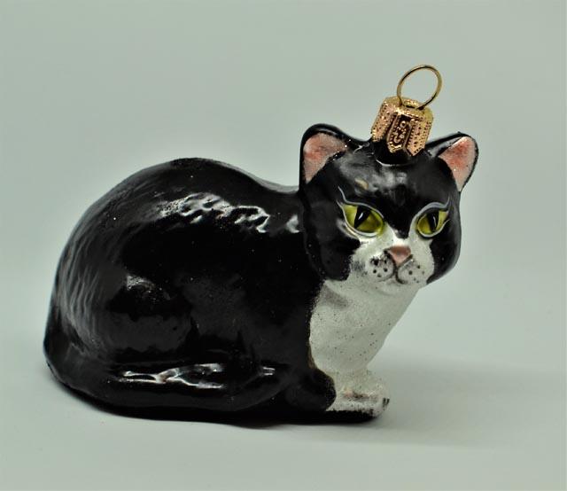 Katze schwarz liegend