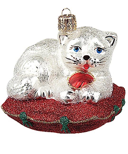 Katze Weiß auf Polster