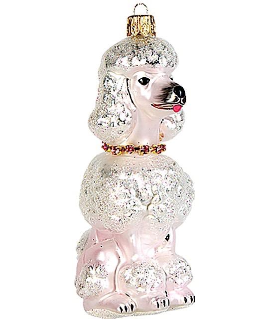 Pudel Hund Weiß