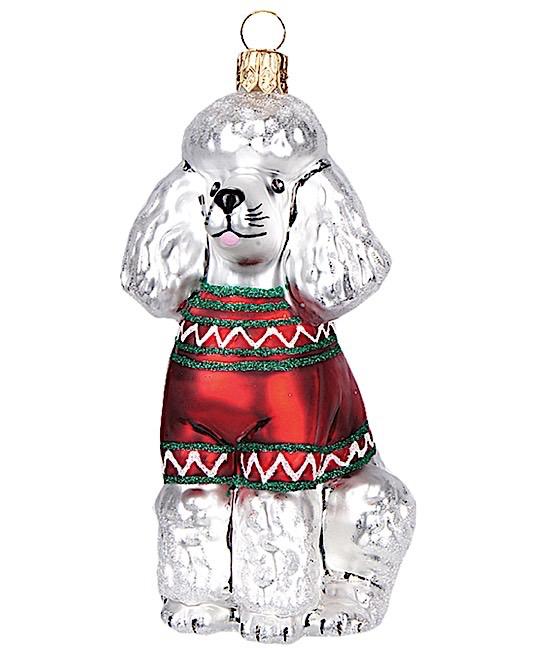 Pudel Hund Weiß mit rotem Pullover